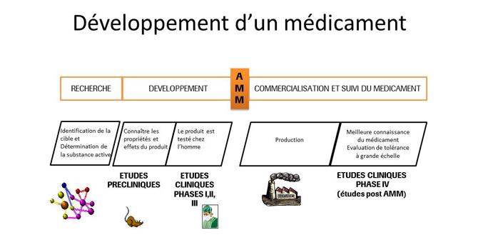 Les Differents Types D Essais Cliniques Roche